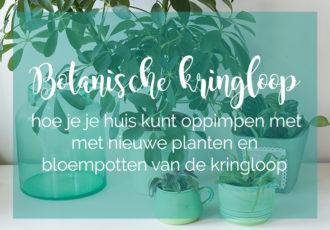 Botanische kringloop - ©debbieschrijft.nl