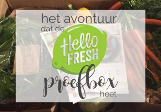 Het avontuur dat de HelloFresh proefbox heet