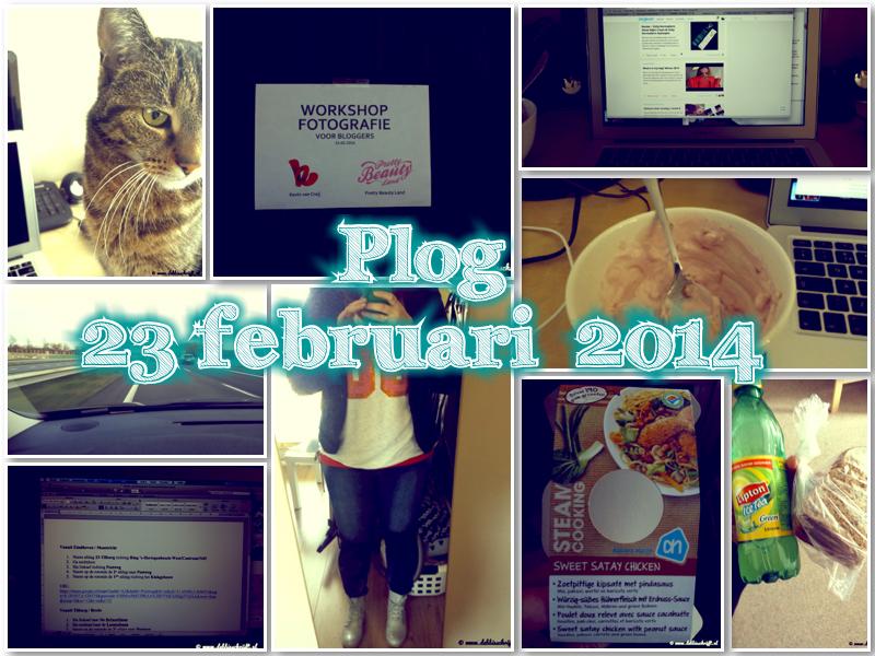 plog_23-02_header