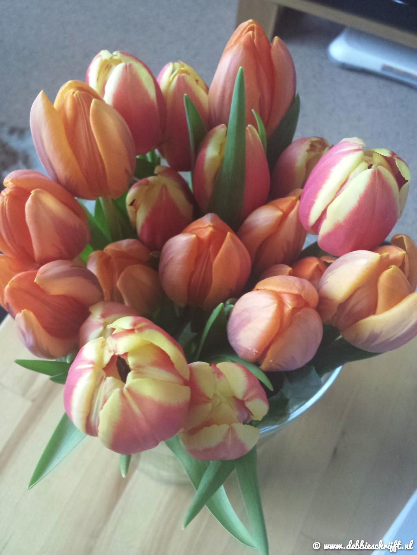Mooie tulpjes, mijn lievelingsbloemen