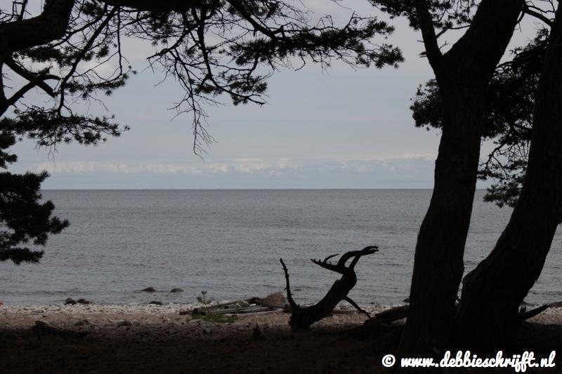 Uitzicht op de Baltische zee vanuit Trollskogen.