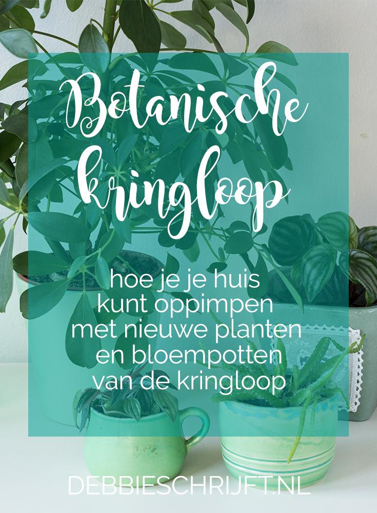 Botanische kringloop: Hoe je je huis kunt oppeppen met nieuwe planten en bloempotten van de kringloop. ©debbieschrijft.nl