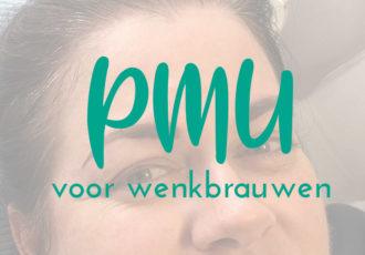 PMU wenkbrauwen_header_debbieschrijft